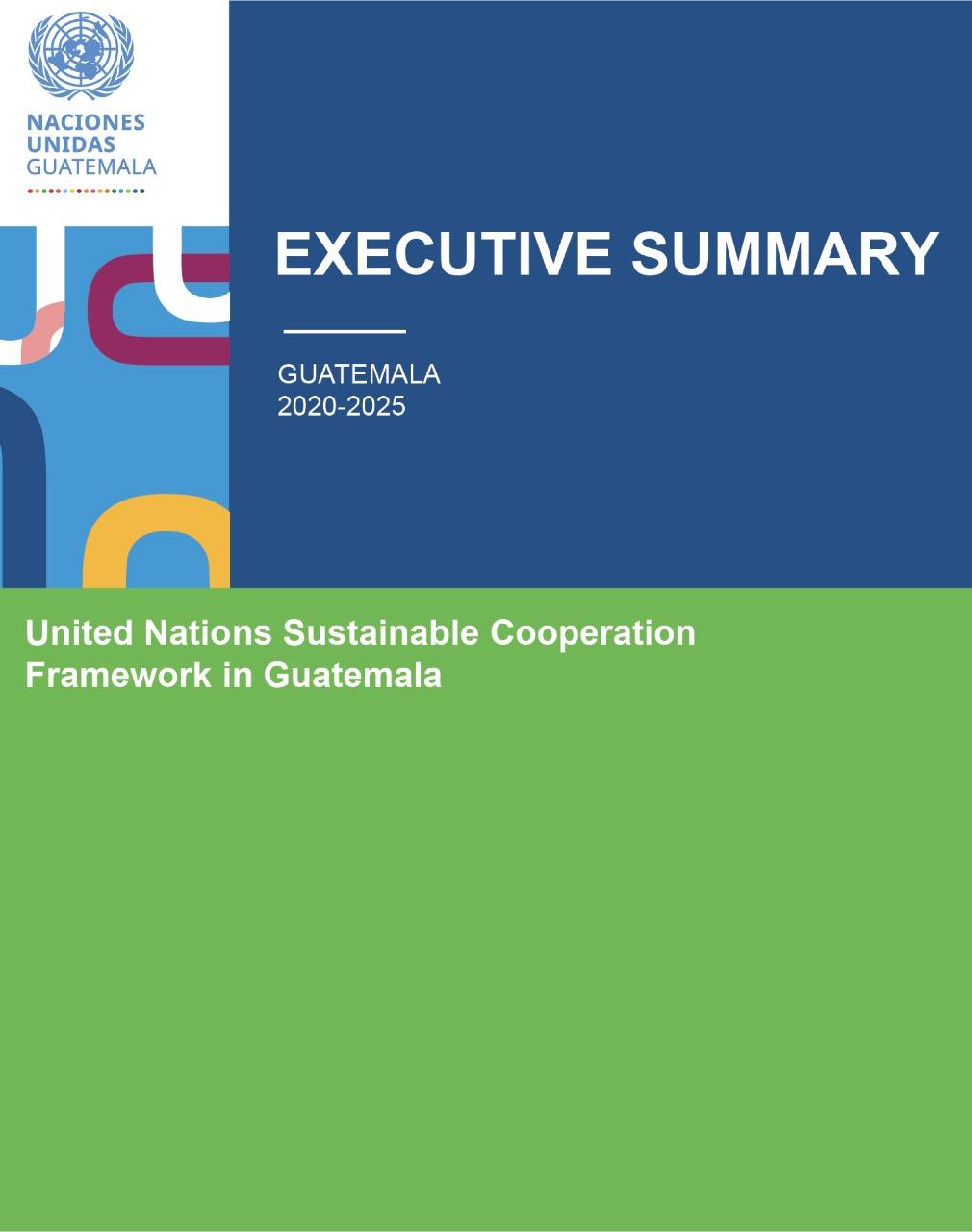 EXECUTIVE SUMMARY UN Cooperation Framework GT